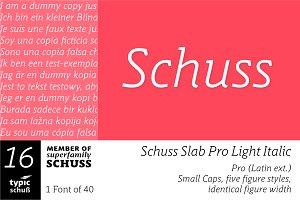 SchussSlabProLightIta No.16 (1 Font)