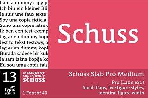 SchussSlabProMedium No.13 (1 Font)
