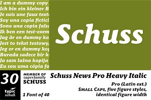 SchussNewsProHeavyIta No.30 (1 Font)