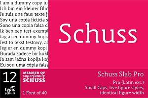 SchussSlabPro No.12 (1 Font)