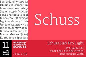 SchussSlabProLight No.11 (1 Font)