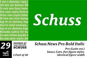 SchussNewsProBoldIta No.29 (1 Font)
