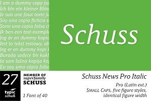 SchussNewsProItalic No.27 (1 Font)