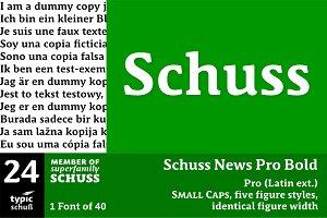 SchussNewsProBold No.24 (1 Font)