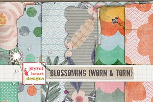 Blossoming {worn & torn} 20% off! :)