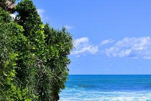Beach's hill