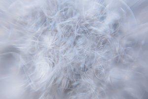 Swirling Grey and White Fibers