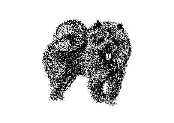 line drawing of dog vector