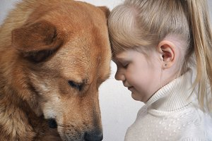 huge dog and little girl. Emotional portrait