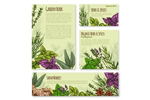 Garden herb and spice, seasoning banner template