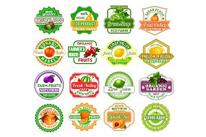 Vector labels tropical exotic fruit juice icons