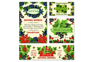 Berry summer fruit banner and poster template set