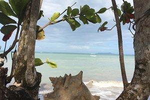 Ocean View, Panama