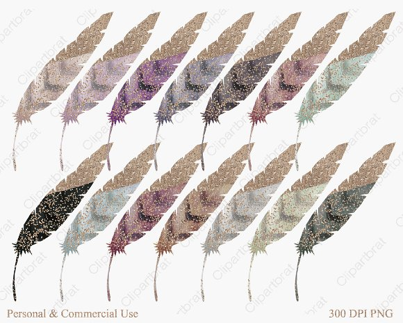 Rose Gold Dipped Feathers in Illustrations - product preview 2