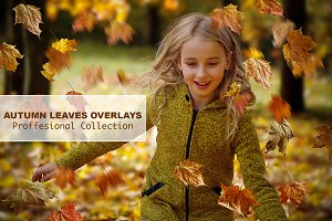 WINTER SALE -66%!!! Leaves Overlays