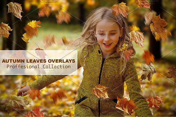 SUMMER SALE -66%!!! Leaves Overlays-Graphicriver中文最全的素材分享平台