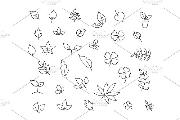 Different types of leaves set of various species of trees and plants drawing decor. Hand drawn sketch vector stock black line illustration landscape.