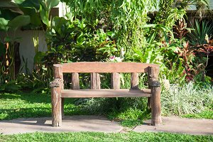 Bench on the path