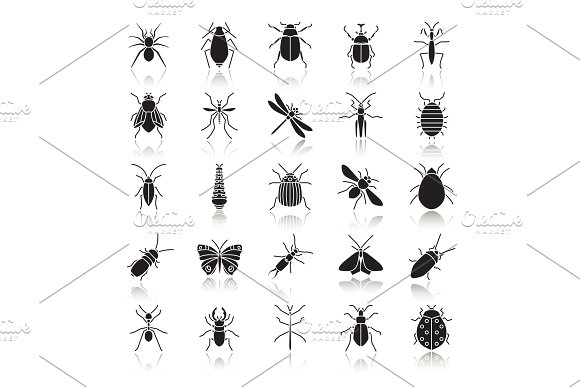 Insects Drop Shadow Black Glyph Icons Set