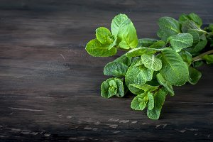 Organic fresh sprigs of mint on the