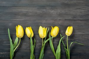 bouquet of yellow tulips with a yell