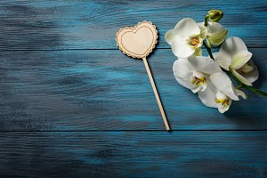 Orchid on a wooden blue background
