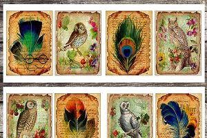 Vintage paper, feathers & owls cards