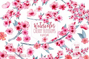 Watercolor Cherry Blossom Graphics