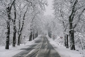Winter road. Country road through f
