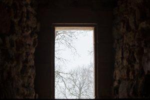Window to winter