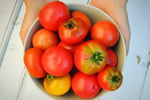 Fresh organic tomatoes in a bowl.
