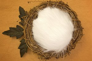 Newborn Backdrop - Nest and Leaves