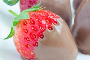 Strawberries covered with milk chocolate on a white plate, closeup, square