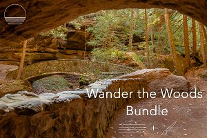 Wander the Woods Workflow Collection