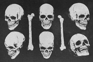 Skulls angles.