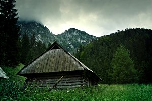 Small wooden mountains house.