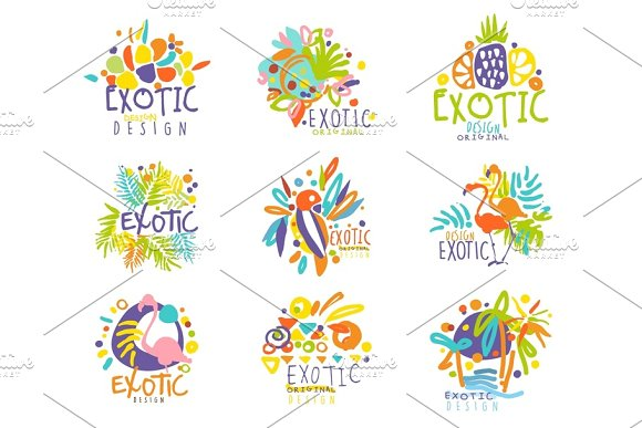 Exotic Tropical Summer Vacation Set Of Logo Graphic Templates