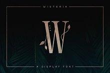 Wisteria • Display Font