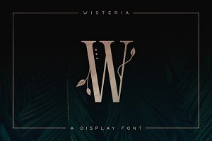 Wisteria • Display Font