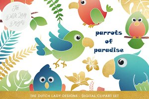 Tropical Parrots & Birds Clipart Set