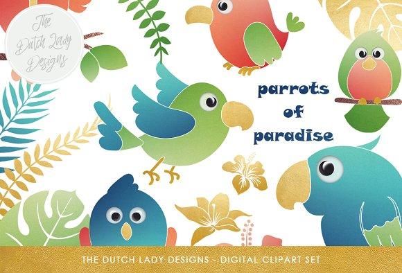 Tropical Parrots Birds Clipart Set