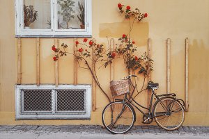 Bicycle against yellow wall.