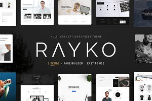 Rayko Multi-Concept WordPress Theme