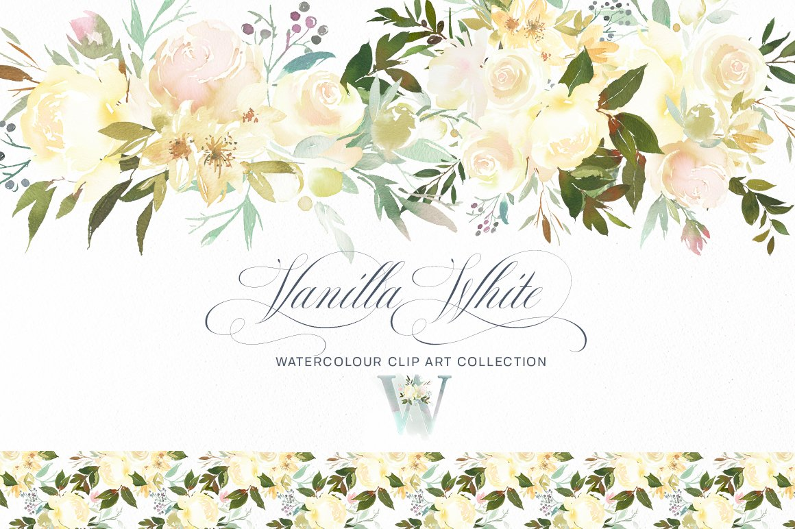 Vanilla White Watercolor Flowers Illustrations Creative Market