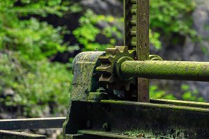 Old rusty worm gear covered by moss