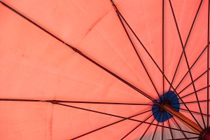 Under the Red Umbrella