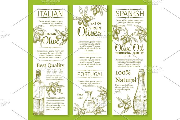 Vector Olives Sketch Banners For Organic Olive Oil