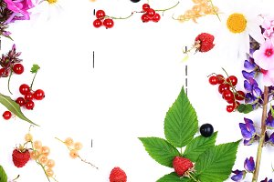 Fresh berries and flowers. Summer background place for text