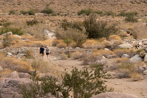 Hikers near Borrego Springs in California desert