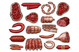 Fresh meat and sausage sketch for food design